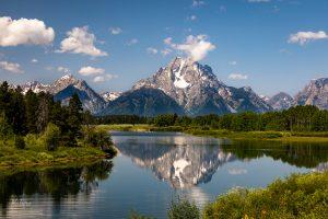 Nature Art from Grand Teton National Park